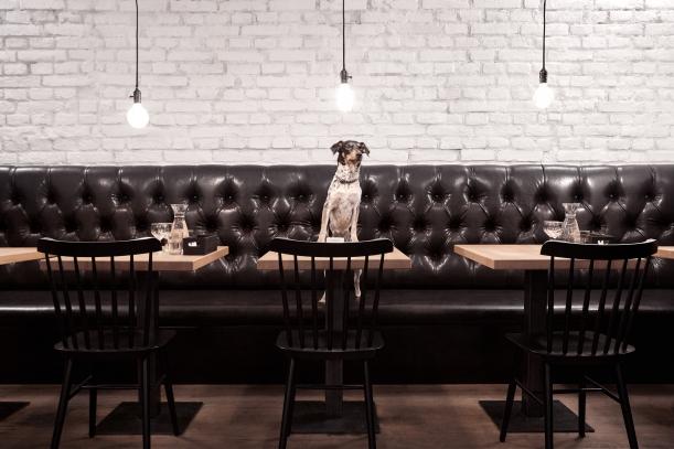 Bar / restaurace / café - Bistro à Table: Francie v jídelníčku  i  interiéru