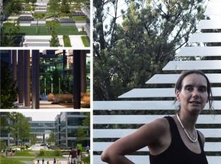 Anna Salingerová:  Koeficienty zeleně by měly být tvárnější