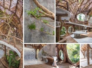 V Mexiku vznikla v korunách stromů galerie moderního umění