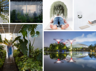 Lidé potřebují přírodu, dokazuje současný design