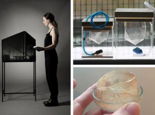 Zuzana Gombošová: Biotechnologie pro design třetího tisíciletí