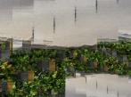 Kaskádové zahrady - Hotel Amande Kaskadove zahrady NEMEC Hotel Amande Hustopece