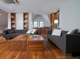 Půdní byt ve vile - obývací pokoj