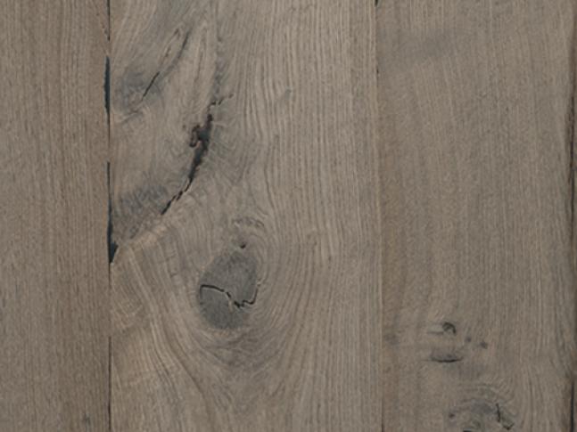 Leeuwenburgh - dub šedý