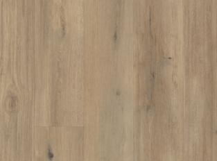 Korlok - Canadian Urban Oak