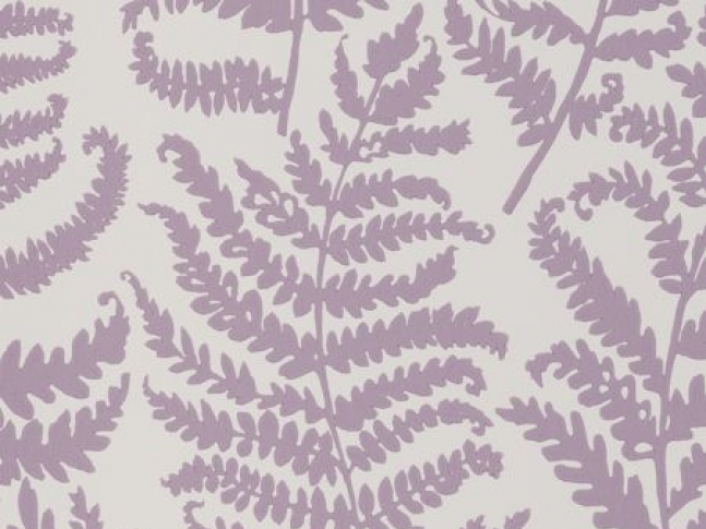 Tapeta Wild Fern Wp Heather