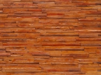 MSD Plywood plywood