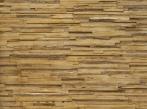 MSD Plywood pino