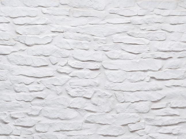 MSD Lajas blanca