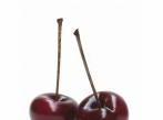 Dekorace třešně - Cherry