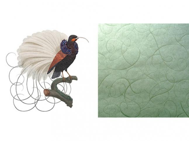 Extinct Animals - Calligraphy Bird
