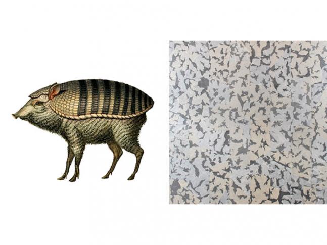 Extinct Animals - Armoured Boar