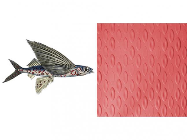 Extinct Animals - Flying Coral Fish