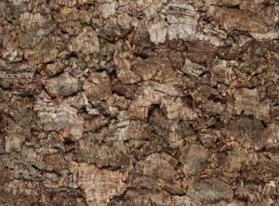 Korková podlaha Eden Solid Cork Tile