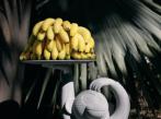 Odkládací stolek Monkey