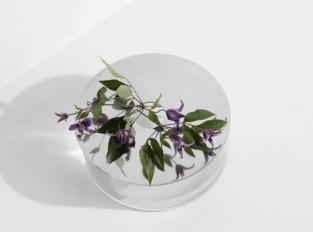 Váza Narciso