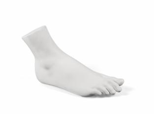 Dekorace Memorabilia Mvsevm Male Foot