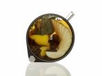 Premium Gastro Porthole